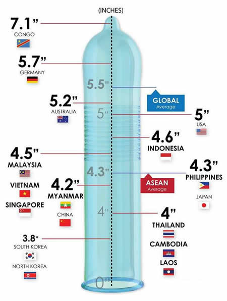 penis size measure