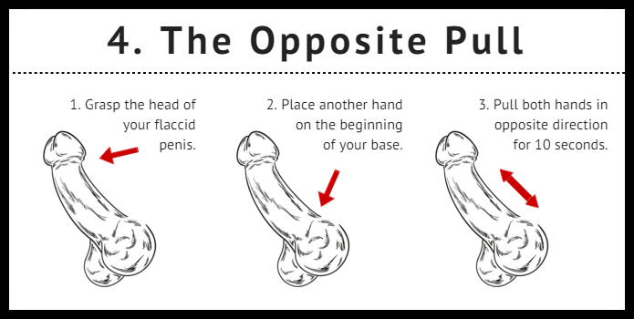 As the popular way to increase the penis
